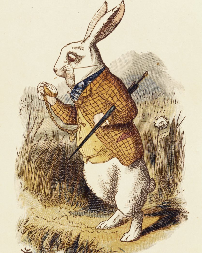 """One of the most iconic rabbits in litterateur is the white rabbit in Alice's adventures in Wonderland, written by Lewis Carroll in 1865.  The white rabbit is an eccentric and high-strung gentleman who is wary of the time.  In the beginning of the book when Alice sees him, he can be heard muttering: """"Oh dear! Oh dear! I shall be too late!"""" The white rabbit in Wonderland has had a large influence on pop culture. Besides many adaptations of the book, the white rabbit has appeared in other works too.  The symbolism of the rabbit and its rabbit hole has appeared in countless movies and songs. In the movie Matrix, Neo is told to """"follow the white rabbit"""" and to take the red pill in order to """"find out just how deep the rabbit hole goes"""". Another example is the song White Rabbit by Jefferson Airplane that makes uses the character and the Wonderland saga as metaphors for drug-induced experiences.  Even in Star Trek (the original series) there is an episode where Doctor McCoy sees the white rabbit.  The original illustration of the White Rabbit is made by Sir John Tenniel."""
