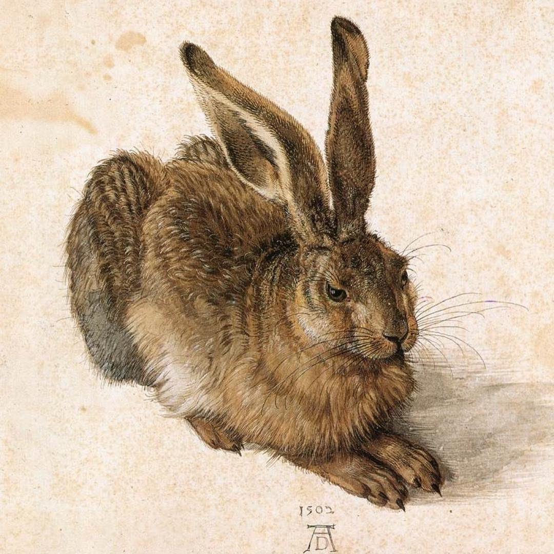 """When I grew up as a kid I had a postcard on my wall depicting a wild hare. It was no ordinary hare... It was the famous """"Feldhase"""" created by renaissance painter, theorist, printmaker and mathematician Albrecht Dürer.  This awesome watercolor painting was made by Dürer in 1502. It is considered to be one of the most astonishing pieces of observational art, not only during the renaissance era, but of all time!  Once every decade you have the possibility to see the painting in real life. However you need to prepare first. Due to preservation issues, the Albertina museum in Vienna cannot have the painting on permanent display. Next time will probably be in 2024. I will then most definitely go to Vienna to see the original motif of my childhood wall decoration."""