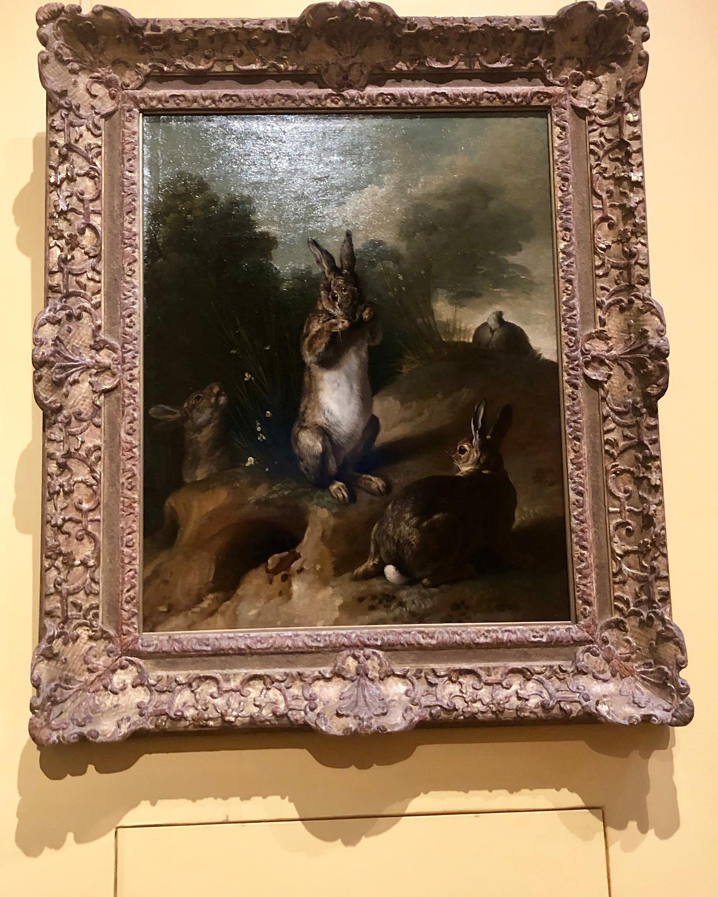 """At the @nationalmuseumswe in Stockholm, I saw a very nice rabbit painting by French painter Alexandre-François Desportes.  The baroque painting, made in the 1720's,  is simply called """"Rabbits"""". Deportes was a renowned still life painter and he became elected to France's Royal Academy of Painting and Sculpture as an animal painter.  As such he was commissioned to make paintings by no others than Louis XIV and Louis XV.  It seems like rabbit paintings are good to have on one's resume."""